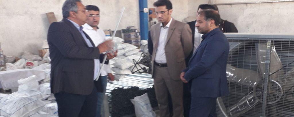 بازدید معاون نظام مهندسی کشاورزی ایران